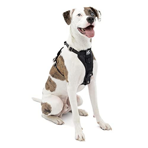 Kurgo Dog Harness | Car Harness for Dogs |...