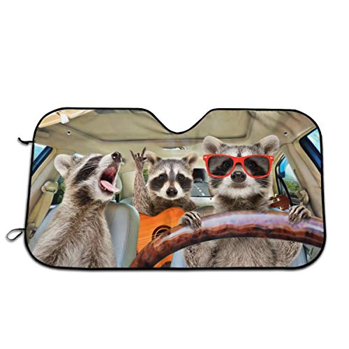 Bargburm Three Funny Raccoons Animals...