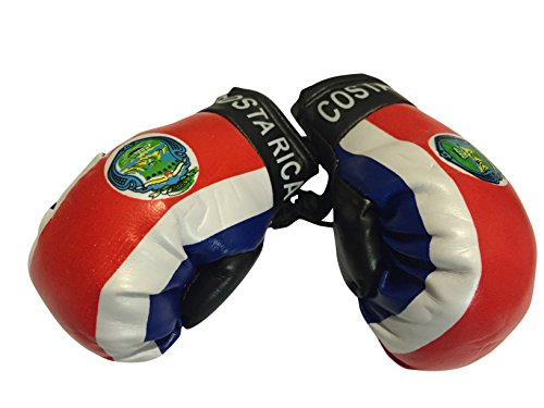 Flag Mini Small Boxing Gloves to Hang Over...